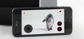 Petcube: A Kickstarter favorite born in the Ukraine, raised in China