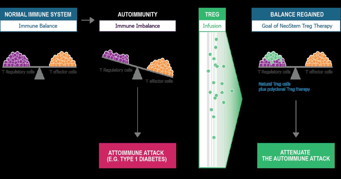 Immune Modulation Program Graphic