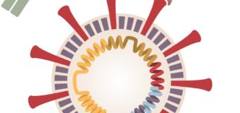 Coronavirus Vaccine Tracker