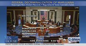 U.S. House Passes Federal Decriminalization of Marijuana