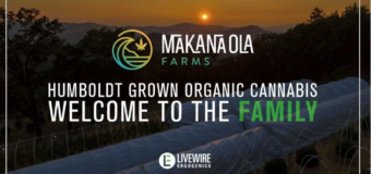 LiveWire Ergogenics Enters Consulting and Marketing Service Agreement with Makana Ola Farms in Humboldt California